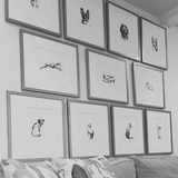 framed dog drawings