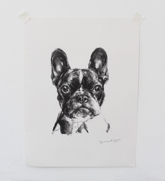 SOLD French Bulldog Charcoal sketch ORIGINAL