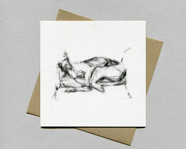 """Great Lengths"" Whippet Fine art card"