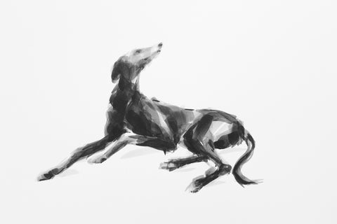Greyhound ink on paper - Original Dog Drawing