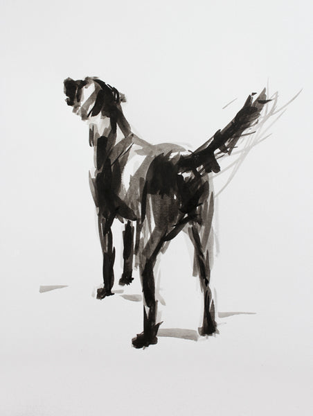 """After the Swim"" Labrador ink on paper - Original Dog Drawing"