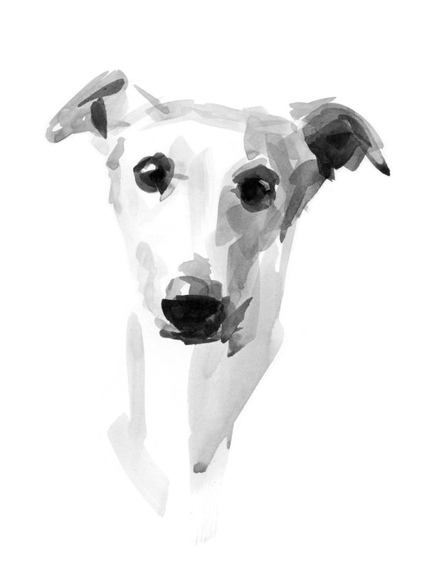 """Muse"" Whippet Sketch Print"