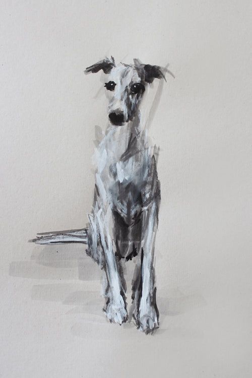"""The Inquisitive Whippet"" Ink/pastel ORIGINAL drawing"
