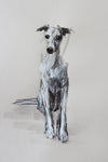 "SOLD ""The Inquisitive Whippet"" Ink/pastel ORIGINAL dog drawing"