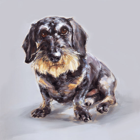 Wire-Haired Dachshund Limited Edition Print