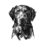 Black Labrador Sketch Print