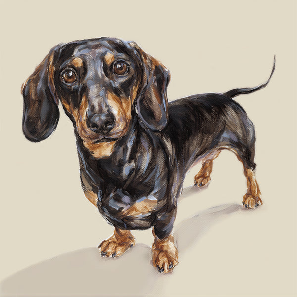Dog art Dachshund