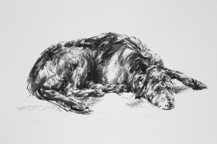 SOLD - Lurcher Sleeping Charcoal sketch ORIGINAL