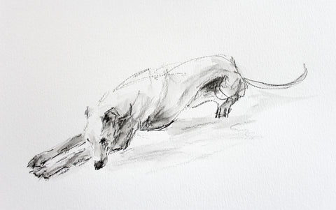 "SOLD ""The Rest"" graphite whippet sketch ORIGINAL"