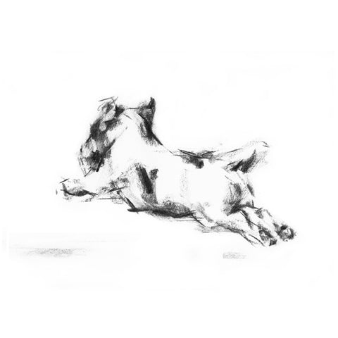Running Terrier Sketch Print