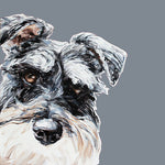 Schnauzer Limited Edition Print