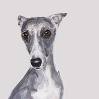 Whippet Limited Edition Print