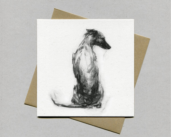 """Whippet Sitting"" Serene Fine art card"