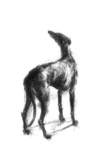 Hope Sighthound Sketch Print