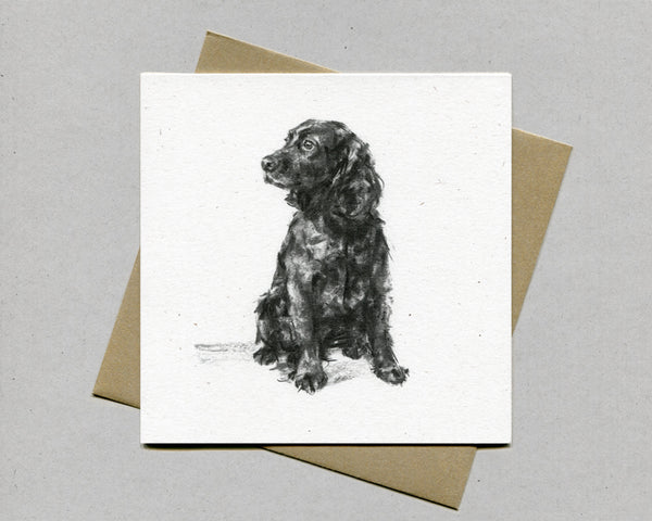 Sitting Cocker Fine art card