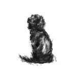 Cocker Spaniel Sketch Print