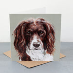 Springer Spaniel Fine art card