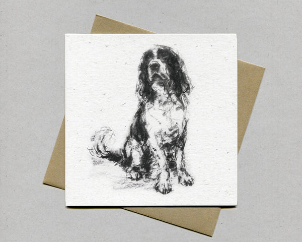Sitting Springer Fine art card