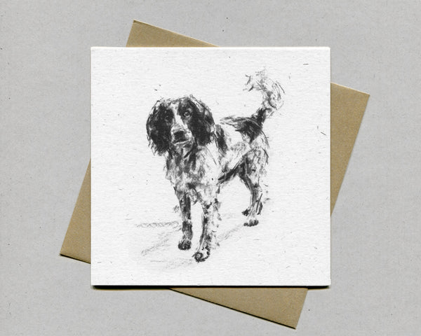 Springer standing Fine art card