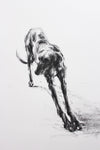 "SOLD ""The Long Stretch"" Charcoal sketch ORIGINAL"