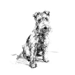 """The Scamp"" Welsh Terrier Sketch Print"