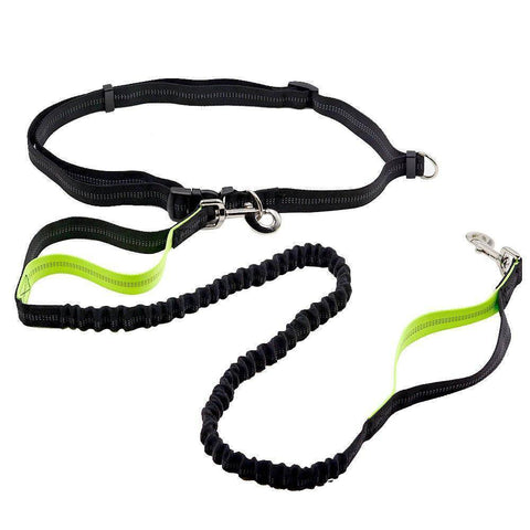 Image of Adjustable Hands Free Bungee Dog Leash - Happy Trends Outlet
