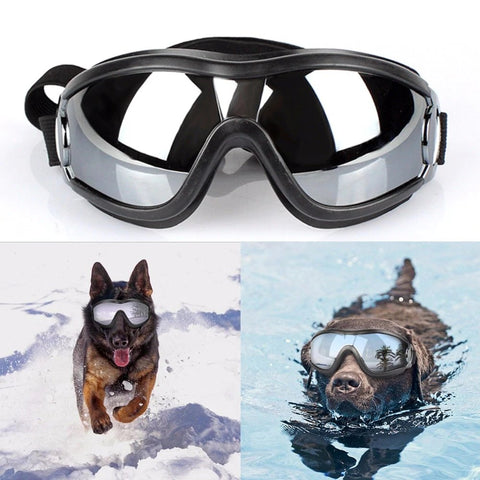 Image of Cool Dog Googles with UV-Protection - Happy Trends Outlet