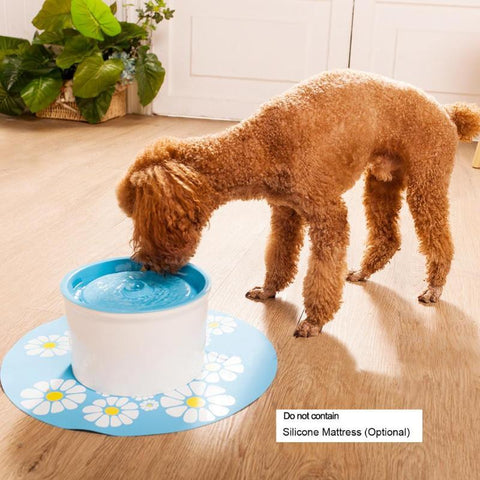 Image of Cute Pet Water Drinking Fountain - Happy Trends Outlet