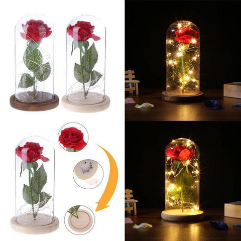 Image of Enchanted Rose Flower Lamp - Happy Trends Outlet
