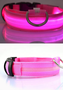 Pet Cat Dog Glow LED Collar - Happy Trends Outlet