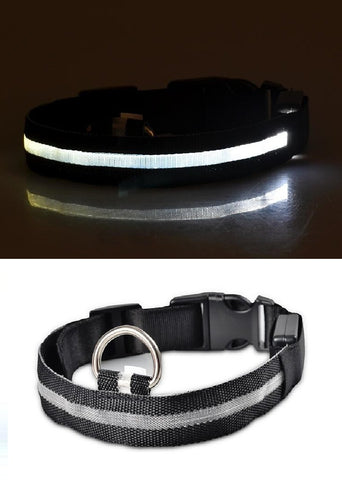 Image of Pet Cat Dog Glow LED Collar - Happy Trends Outlet