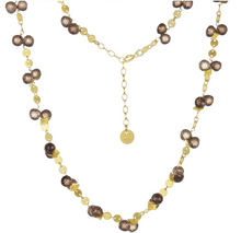Load image into Gallery viewer, Smokey Topaz Coin Necklace