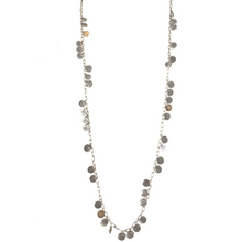 Load image into Gallery viewer, Silver Apollonia Long Multi-Coin Necklace