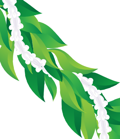 Maile and Crown Flower Lei- vector