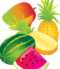 Tropical Fruit Set- vector