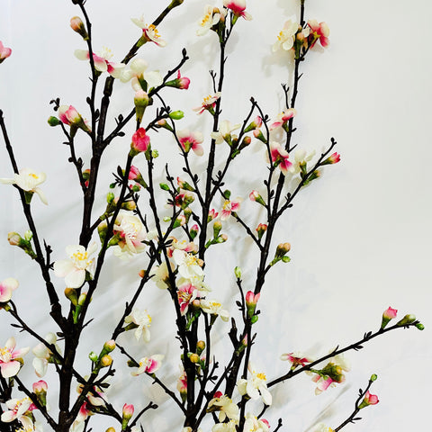 Blossom Quince Branch