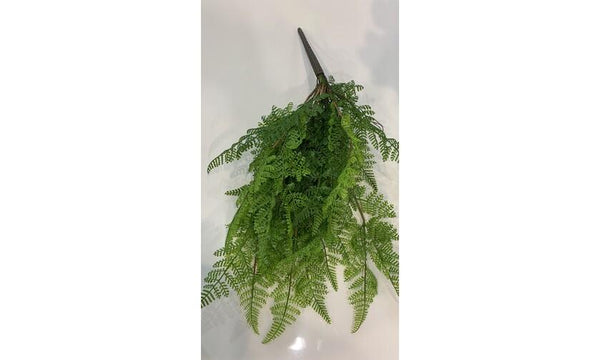 Leather Fern Hanging