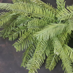 Fern Bush leather leaves