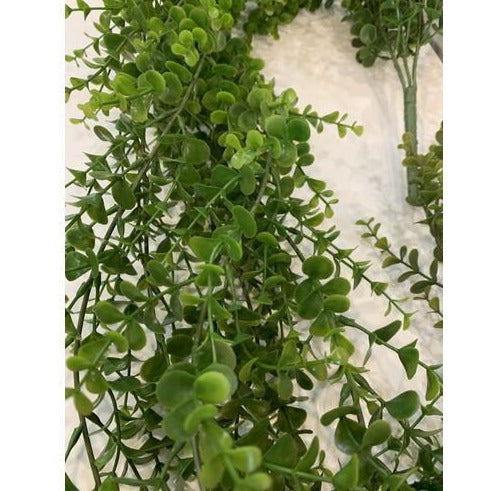 Boxwood Hanging Bush 165cm
