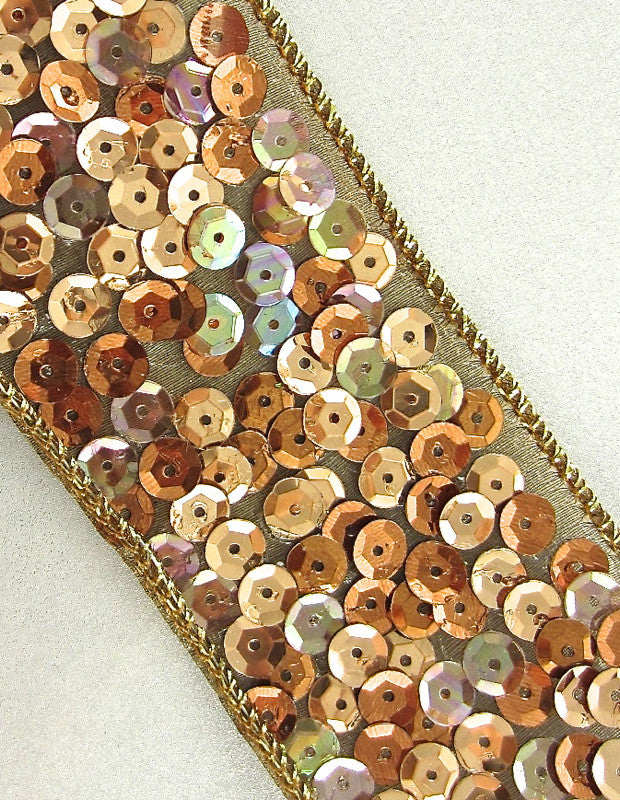 "Trim with Multi-Colored Gold Tones Sequins on Stiff Net Backing Remnant 2"" x 80"""