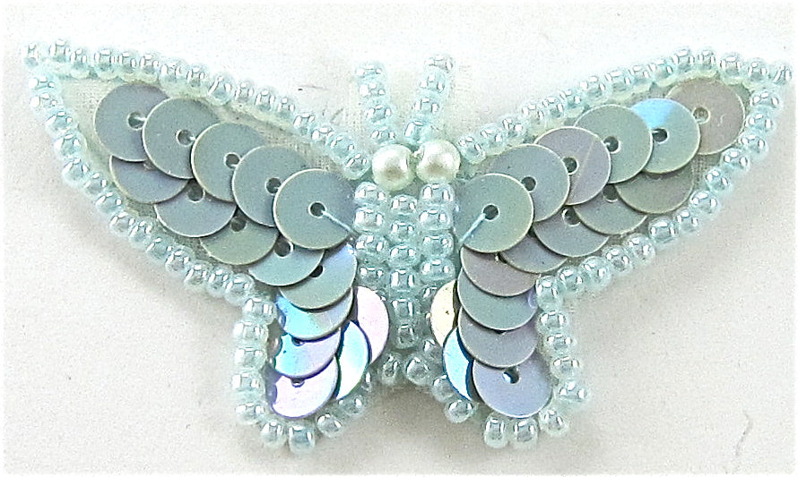 "Butterfly Lite Blue 1"" x 2"""