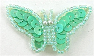 "Butterfly Mint Green 1"" x 2"""