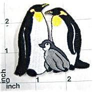 "Penguin Family Embroidered Iron-on  2.25"" x 2.5"""