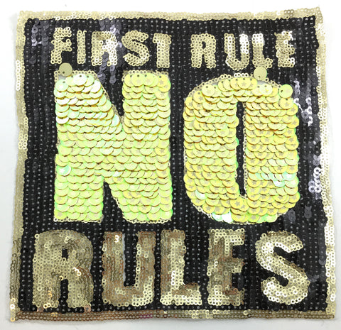 "FIRST RULE NO RULE Sequins on Thin Black Netting 8"" x 8"""