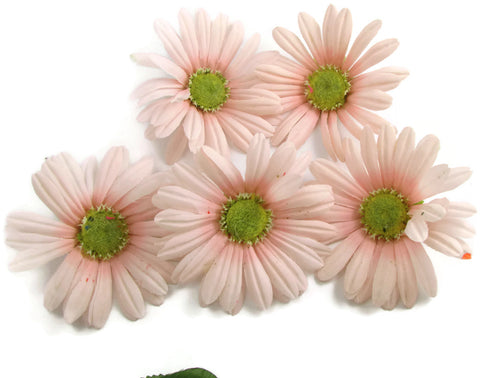 "Flower Set Pink and Green Cloth and Plastic,  4"" each"