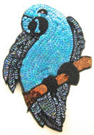 "Parrot with Turquoise and Black Sequins and Beads 10"" x 6.25"""