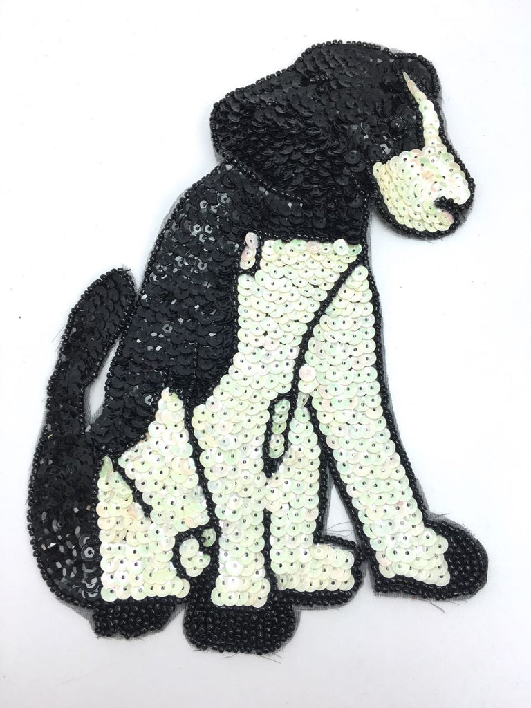"Dog Sitting with Black and White Sequins and Beads  8"" x 6"""
