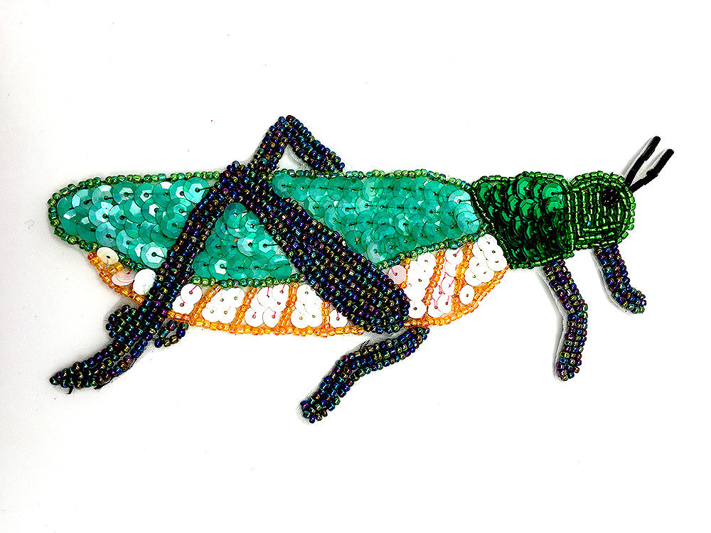 "Grasshopper Multi-Colored 6.5"" x 3.5"""