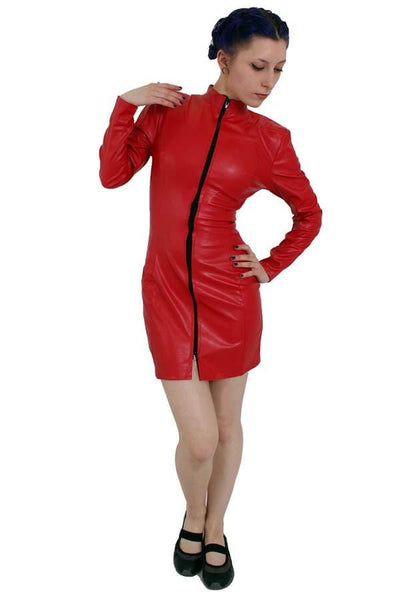 Hide Sexy Longsleeve Zip Dress