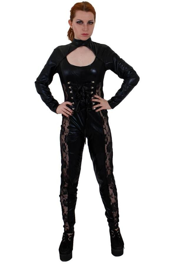 Long Sleeved Liquid Lycra Catsuit